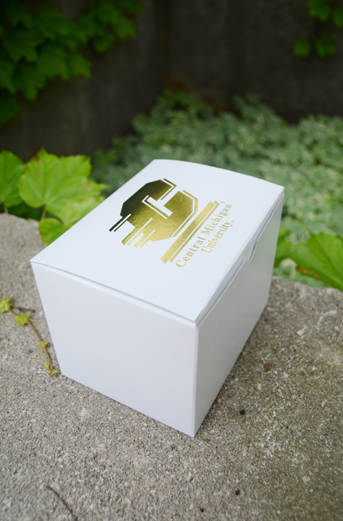 6X4x4 White Gift Box With Gold Flying