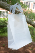 "Clear Frosted 10X8"" Gift Bag"