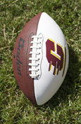 BADEN OFFICIAL SIZE Autographable FOOTBALL W/ FLYING C LOGO
