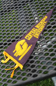 6X15 Central Michigan Pennant