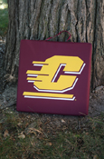 "14x14x1"" Flying C Maroon Stadium Cushion"