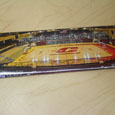 Assorted Panoramic Central Michigan University Photo Magnets