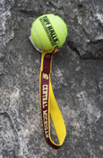 Central Michigan Tennis Ball Toss Dog Toy