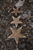Wood Star - Double Oak With Adhesive Back
