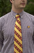 Tie - Maroon & Gold Stripes With Seals