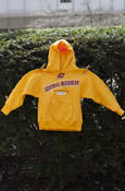 Flying C Chippewas Central Michigan Mt. Pleasant Gold Youth Hoodie