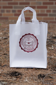 "Clear Frosted Seal 8""X5""X10"" Gift Bag"