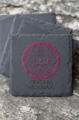Central Seal Slate Coasters - Set Of Four