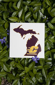 "State Of Michigan 5"" Decal - Waterproof & Scratch Proof"
