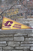 Flying C Central Michigan Grid Canvas Pennant