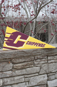 Flying C Chippewas Canvas Pennant
