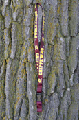 Raised Chippewas Repeat Lanyard With Buckle