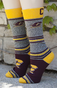 970a71d0d42 Flying C Gray Striped Socks With CMU On Back