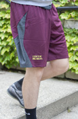 Central Michigan Nike Maroon And Gray Shorts