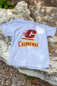 Flying C Central Michgian Chippewas Youth Gray T-shirt