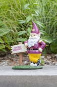 "12"" Flying C Gnome With Central Michigan Sign"