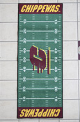 Central Michigan Football Field 30X74 Runner