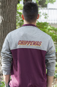 Flying C Gray and Maroon 1/4 Zip With Chippewas On Back