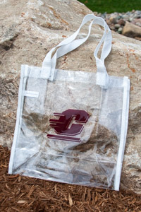 Clear Plastic Stadium Bag