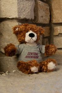 Plush Brown & White Bear Wearing a Central T-Shirt<br><small>GUND</small>