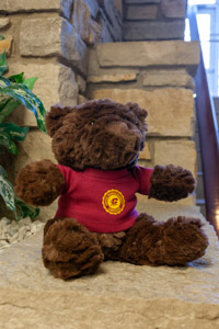 Plush Brown Bear Wearing a Central Seal T-Shirt<br><small>CHELSEA TEDDY BEAR CO.</small>