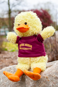 Plush Yellow Duck wearing a Central T-Shirt