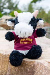 Plush Black & White Cow wearing a Central T-Shirt