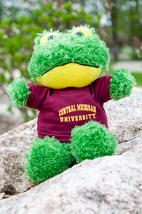 Plush Green Frog wearing a Central T-Shirt
