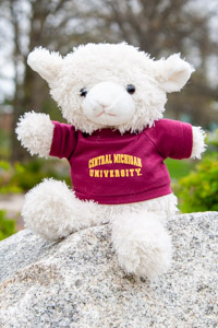 Plush White Lamb wearing a Central T-Shirt