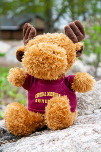 Plush Brown Moose wearing a Central T-Shirt