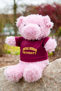 Plush Pink Pig wearing a Central T-Shirt