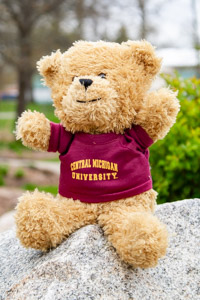Plush Oatmeal Brown Bear wearing a Central T-Shirt