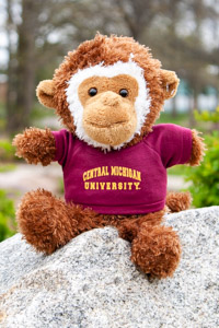 Plush Brown & White Monkey wearing a Central T-Shirt
